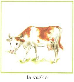 vache pere castor